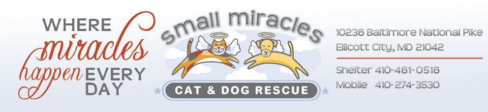 Small Miracles banner